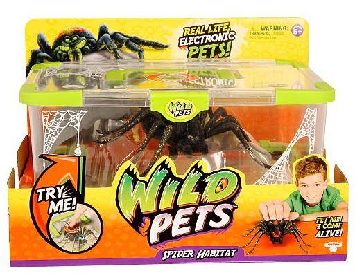 wild pets spider habitat