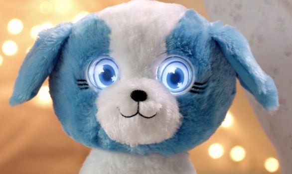 bright eyes pets